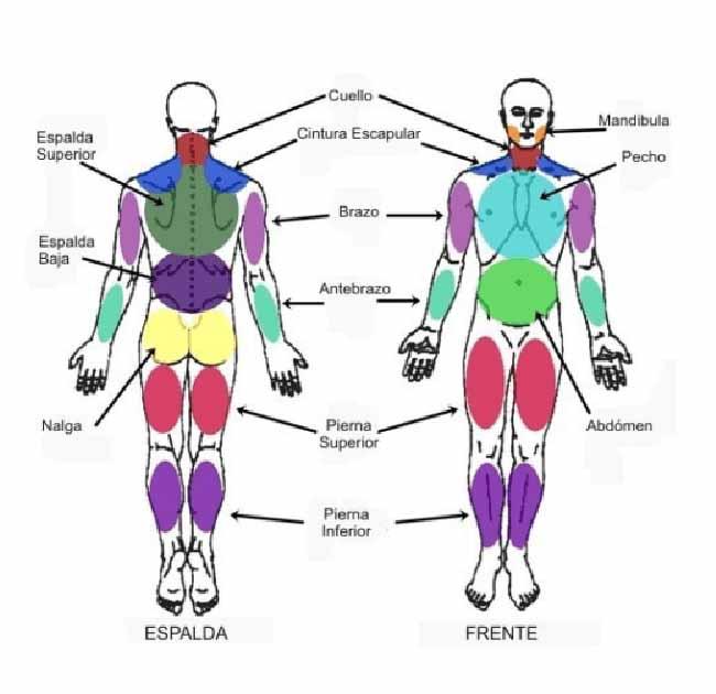 infografia puntos gatillo fibromialgia