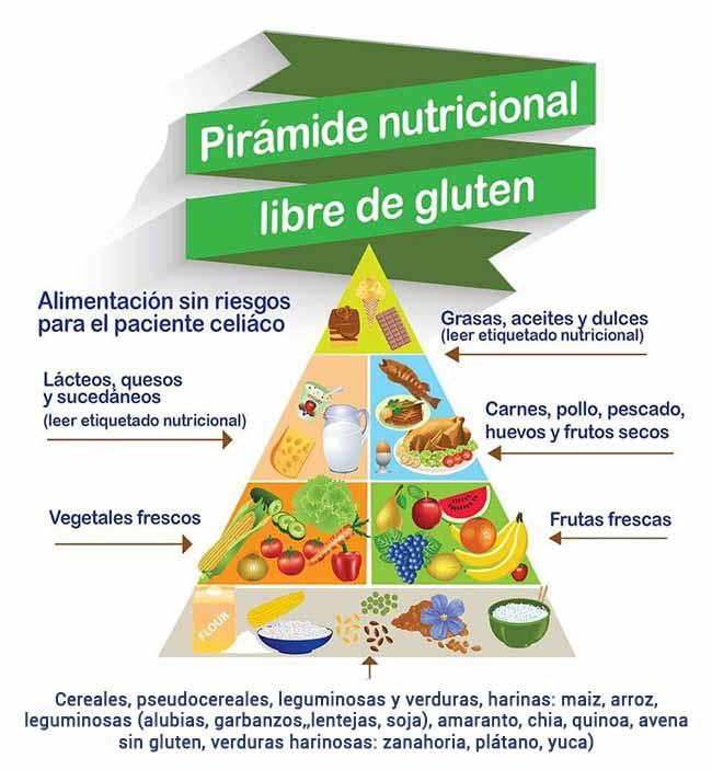 piramide alimentos sin gluten