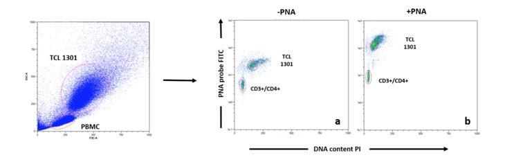 Ejemplo de análisis de datos de Flow Fish de la subpoblación T helper.  Cada muestra de sangre se tiñó con la sonda de PNA (b) o sin (a), seguido de la tinción de anticuerpos (CD3, CD4, CD8, CD16, CD19), antes de la adquisición de datos.